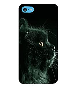 HiFi Designer Phone Back Case Cover Apple iPhone 6s Plus :: Apple iPhone 6s+ ( Cute Cat Side Look Black Kitten )
