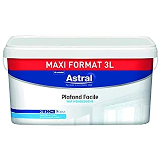 ASTRAL 5272396 Wall and Ceiling Paints