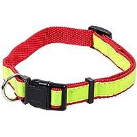 [Gesponsert]Hundehalsband Reflektierend Hundeleine 51 cm Halsband Hund Leuchtband von Alsino, Variante wählen:P087/535 rot Gr. 2