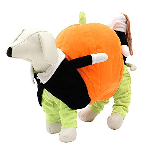 Beetest® - vestiti per cani e gatto,costume da compagnia zucca di trasporto del vestiti per gatto del cane cosplay/halloween/fotografia,xxl