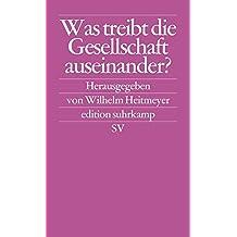 Was treibt die Gesellschaft auseinander?: Bundesrepublik Deutschland: Auf dem Weg von der Konsens- zur Konfliktgesellschaft