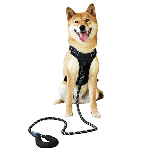 Raining Pet Hundegeschirr Hunde Geschirr für Große Hunde Anti Zug Geschirr No Pull Sicherheitsgeschirr Kleine Mittlere Hunde Brustgeschirr Schwarz M -