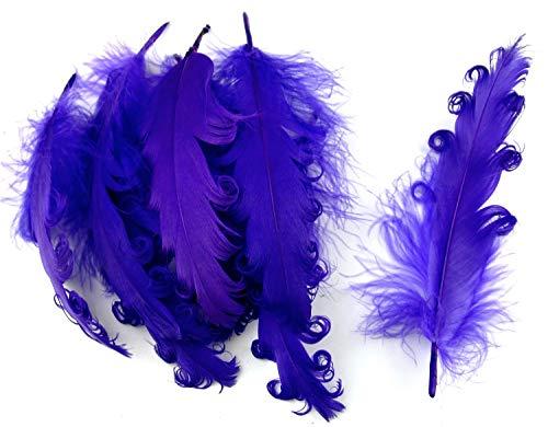 PANAX Echte extravagante Gänsefedern mit lockigen Spitzen in Lila - Federnlänge ca. 12-18cm - 16 Farbvarianten, Ideal zum Basteln, Dekorationen, Fasching, Karneval, Hochzeiten, Hüte