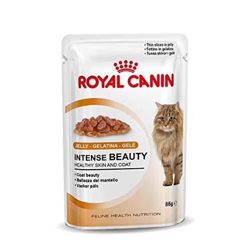 ROYAL CANIN Comida para Gatos Intense Beauty In Jelly 12 * 85gr