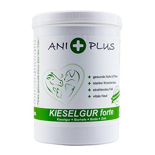 AniPlus - Kieselgur forte 400 g | Kieselgur füttern - wertvolle Nährstoffe für Hund, Katze und Pferd | Reich an Silizium plus Bierhefe, Biotin und Zink | Für starke Zähne und Knochen (100% biologisch)