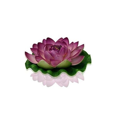 Skylantern Original 1031 Lotus Fleur Flotte