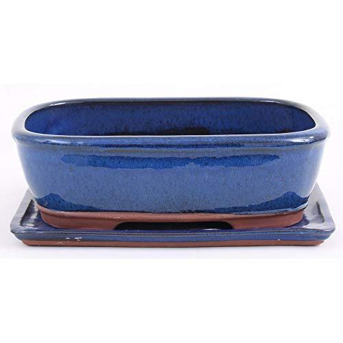 Bonsai - Schale eckig 32 x 24 x 9,5 cm, blau, mit Untersetzer 41077