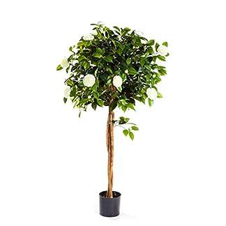 artplants.de Set 'Árbol de Camelia Artificial + Spray de protección UV' – Camellia Japonica de imitación ERINA, Troncos Naturales, Blanco 160cm