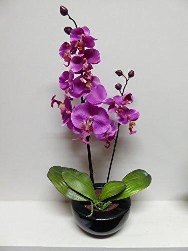 UK-Gardens - Maceta de orquídeas artificiales, grande, 46 cm de alto, con flores de seda en una maceta redonda de cerámica negra, para uso doméstico o en interiores