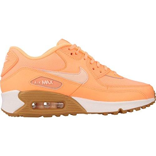 Scarpe Nike – Wmns Air Max 90 corallo/rosa/marrone Arancione