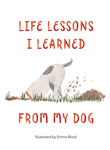 Life Lessons I Learned from my Dog