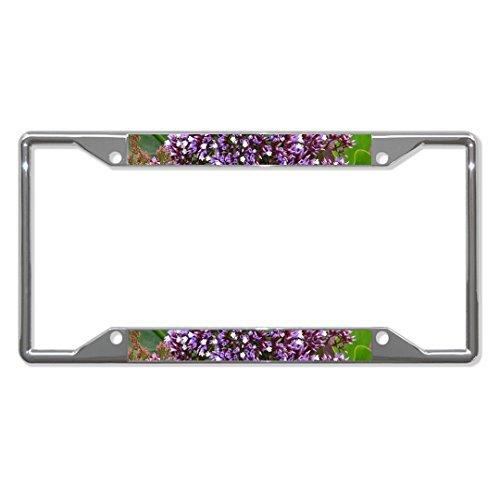 Preisvergleich Produktbild Saniwa Nummernschild Abdeckungen Gänseblümchenblättriger Blume Chrom Metall Nummernschild Rahmen Tag Halter Vier Löcher