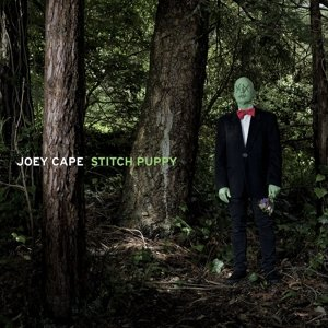 Joey Cape En concierto