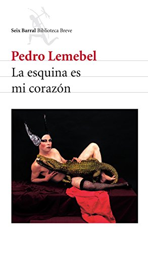 La esquina es mi corazón por Pedro Lemebel