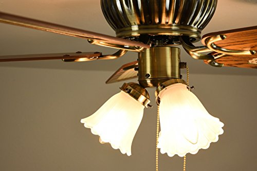 Low Profile Ceiling Fan Kisa Brass 105 Cm With 3 Lights Pull Chains And Reversible Blades In