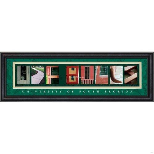 Prints Charming Letter Art Framed Print, U of South Florida-Usf Bulls, Bold Color Border by Prints Charming, LLC Usf Bulls
