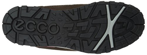 Ecco Oregon, Chaussures Multisport Outdoor Homme Marron (Coffee/coffee)