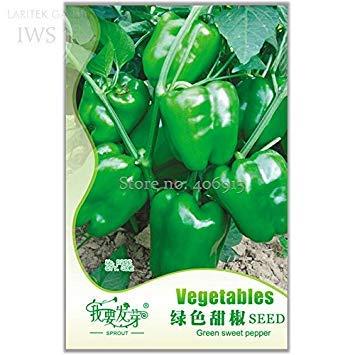 Visa Store 2018 Heißer Verkauf Heirloom Organische Grüne Glocke Paprika Samen, Original Pack, 40 Samen, Organischen Gemüsegarten Hof IWSD222S