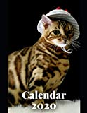 Bengal Cats Calendar 2020: Animals Cats Calendar 2020 Weekly Planer Logbook Diary Gift Todo Memory Book Budget Planner Hobby | Men, Woman, Girls & ... cm | 57 Pages (Cats Calendars 2020, Band 1)