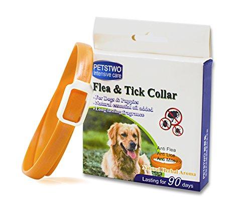Zeckenhalsband für kleine, mittlere und große Hunde & Katze, Wasserdicht, Der Natürliche Zeckenschutz Wirksamen Schutz gegen Flöhen