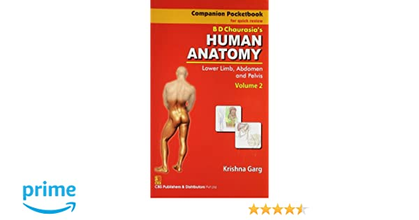 Buy Companion Pocketbook For Quick Review Bd Chaurasias Human