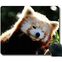 portatiles gaming media markt - Amazon.es