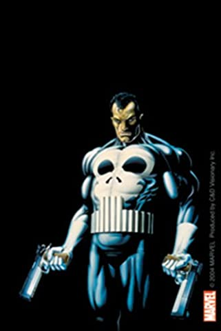 The PUNISHER, Official Licensed Marvel Comics Book, 7.7