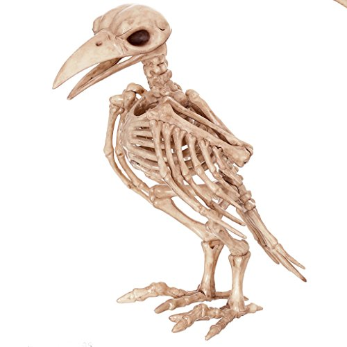 nen Simulation Crow Vogel Modell Schädel Knochen Regal Horror Bar Haunted House Requisiten (Tasche Von Knochen Halloween Requisiten)