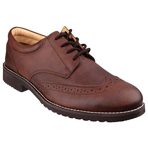 Cotswold Cotswold Hardwicke formale scarpa uomo Brown