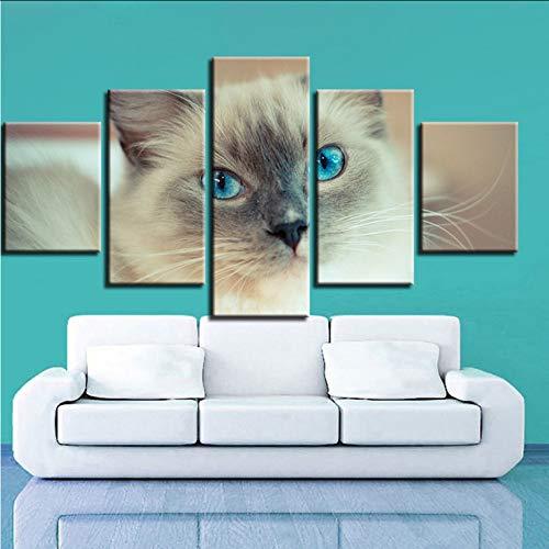 inwand Malerei Dekor Wohnzimmer Wand 5 Stück Schöne Weiße Katze Blaue Augen Modular Poster Frame Art Hd Bilder, 16X24 / 32/40 Zoll, Ohne Rahmen ()