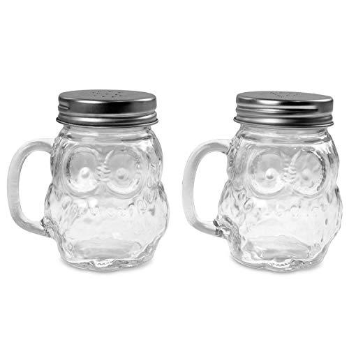 RSW Glas Salz und Pfeffer Shaker Topf-Set Eule Design Mason Jar-mit Griff-Schraube Top (Top Shaker Mason)