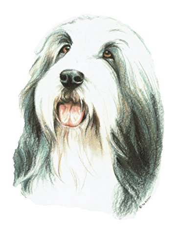 2 Aufkleber/Sticker Hunde Bearded Collie [r022]