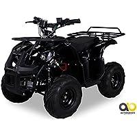 Kinder Elektro Quad S-8 Farmer 1000 Watt Miniquad schwarz