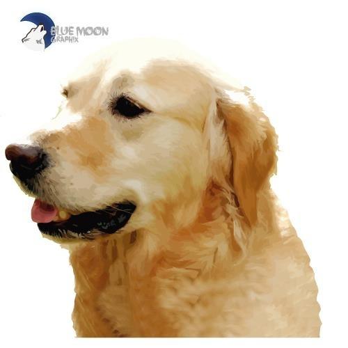 BLUE MOON GRAPHIX Sticker Aufkleber Hund Golden Retriever BMG0041