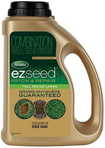 FERRY Bio-Saatgut Nicht nur Pflanzen: EZ Seed-Patch und Rir Tl 3 100 Seeds -Lawn Rir Mix -