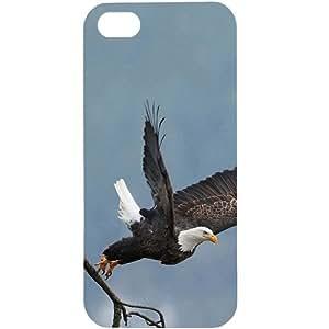 Casotec Eagle Take off Design Hard Back Case Cover for Apple iPhone 5 / 5S