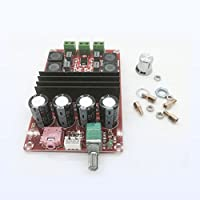 Hanbaili Placa de amplificador digital, 2x100W XH-M190 TPA3116 D2 Placa de amplificador de audio digital de 2 canales DC 12V-24V
