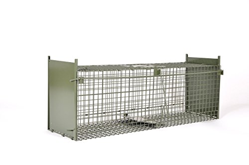 platzsparende KrapTrap® Tierfalle, Lebendfalle, Katzenfalle, 92 x 32 x 26 cm