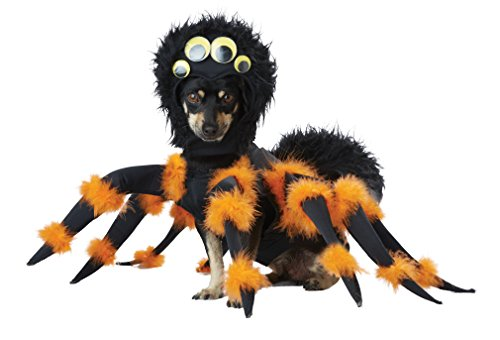 Kostüm Spinnen - California Costumes pet20149 Spider Pup Dog Kostüm, groß