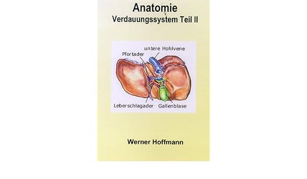 Verdauungssystem Teil II, (Pankreas, Leber, Galle): Amazon.de: DVD ...