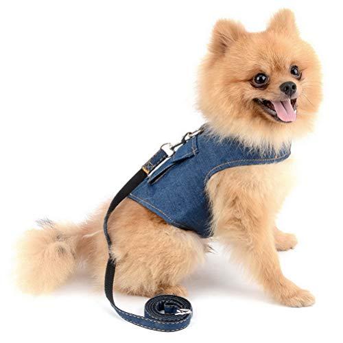 für kleine Hunde Leine Set verstellbare D-Ring kein Ziehen Blei Pet Puppy Katze strapazierfähigem Weste Geschirr Jacke für Yorkshire ()
