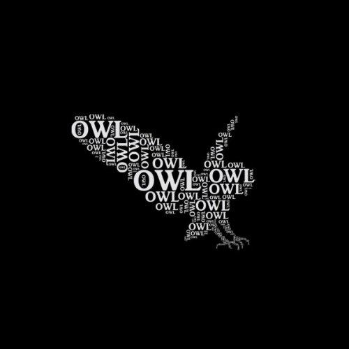 TEXLAB - Owl - Herren T-Shirt Graumeliert