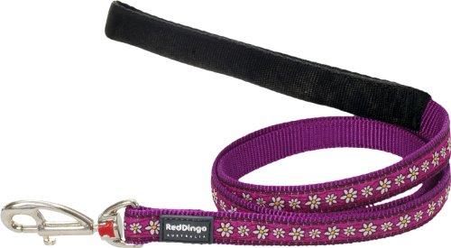 Red Dingo Daisy Chain Purple Dog Lead, Medium 1