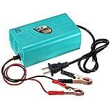 Casavidas 12 V Batterie Automatisches Ladegerät für Auto Wohnwagen Wohnmobil Motorräder 220 V