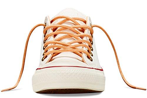 Converse Chuck Taylor All Star Ox chaussure de basket Parchment