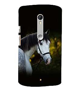 printtech Nature Animal Horse Back Case Cover for Motorola Moto X Style