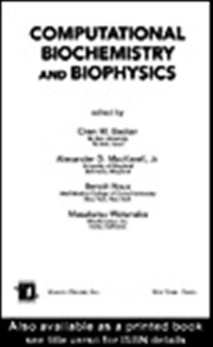 Computational biochemistry and biophysics