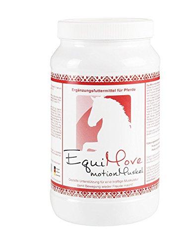 EquiMove motion Muskel, tierärztliches Ergänzungsfuttermittel für den Muskelaufbau, 1er Pack (1 x 1,5 kg)