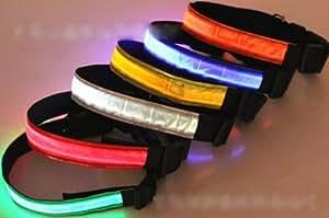 Happy Pets Collier réglable Laisse LED Pet sécurité Dog Night Light-up clignotant Glow In The Dark