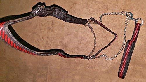 Altawash Pferd Nasenriemen mit Stahl Kette und Pferd Leine, Rot & Schwarz, Komplett Anpassbar -